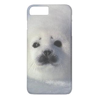 Harp seal Phoca groenlandica) A week-old harp iPhone 7 Plus Case
