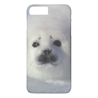 Harp seal Phoca groenlandica) A week-old harp iPhone 8 Plus/7 Plus Case