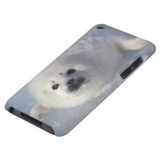 Harp seal Phoca groenlandica) A week-old harp iPod Case-Mate Cases
