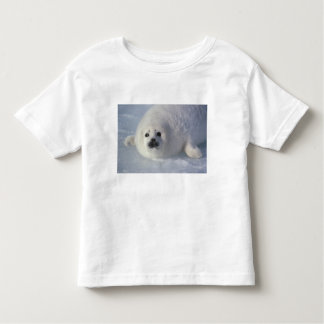 Harp seal Phoca groenlandica) A week-old harp Toddler T-Shirt