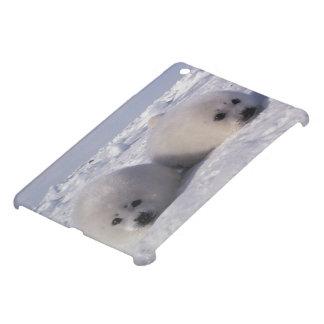 Harp seal (Phoca groenlandica) Harp seal pups iPad Mini Case