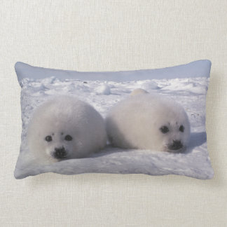 Harp seal (Phoca groenlandica) Harp seal pups Lumbar Cushion