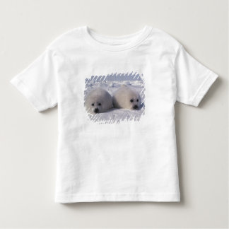 Harp seal (Phoca groenlandica) Harp seal pups Tee Shirt