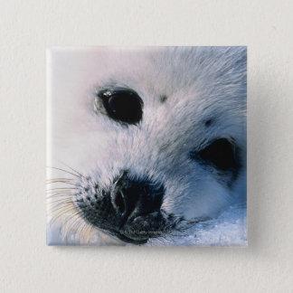 Harp seal pup 2 15 cm square badge