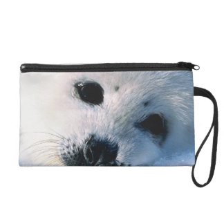 Harp seal pup 2 wristlet purses