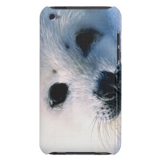 Harp seal pup 2 iPod touch Case-Mate case