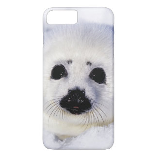 Harp seal pup ice Gulf of St. Lawrence, iPhone 7 Plus Case