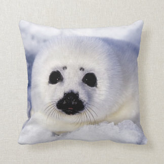 Harp seal pup ice Gulf of St. Lawrence, Throw Pillow