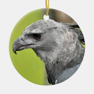 Harpy Eagle 2.JPG Christmas Ornament