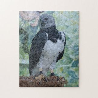 Harpy Eagle Still Jigsaw Puzzle