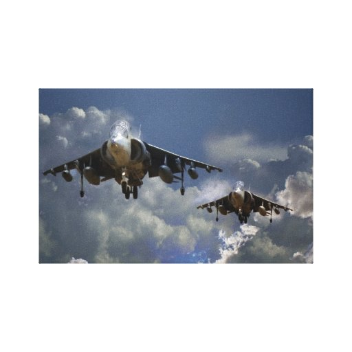 Harrier Approach Stretched Canvas Prints
