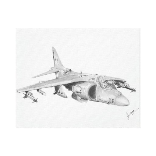 Harrier Stretched Canvas Prints
