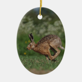 Harriet Hare - hanging ornament