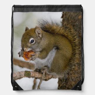 Harriman State Park, Idaho. USA. Red Squirrel Drawstring Bag