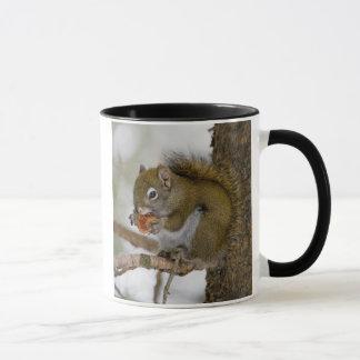Harriman State Park, Idaho. USA. Red Squirrel Mug