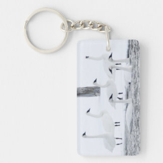 Harriman State Park, Idaho. USA. Trumpeter Swans Double-Sided Rectangular Acrylic Key Ring