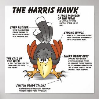 Harris Hawk Cartoon Print