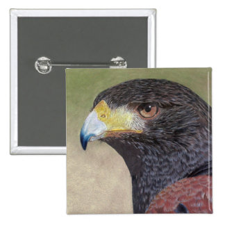 Harris Hawk colored pencils 15 Cm Square Badge