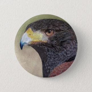 Harris Hawk-cp 6 Cm Round Badge