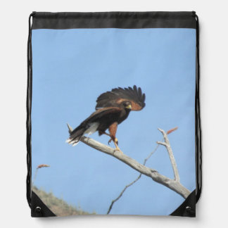 Harris Hawk Drawstring Bag