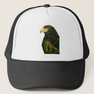 Harris Hawk Hat