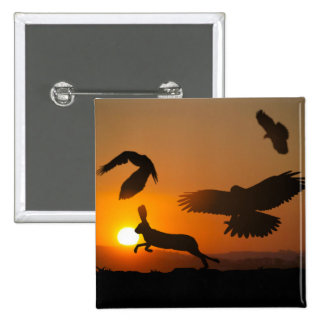 Harris Hawks Hunting 15 Cm Square Badge