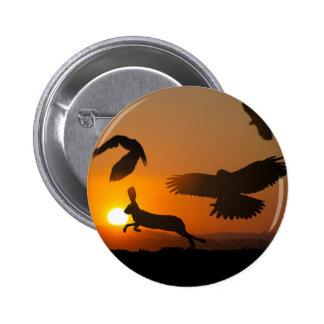 Harris Hawks Hunting 6 Cm Round Badge