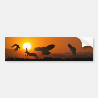 Harris Hawks Hunting Bumper Sticker