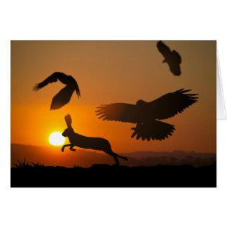 Harris Hawks Hunting card Greeting Card