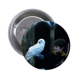 Harry and Hedwig 2 Pin