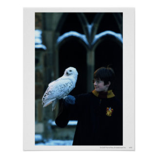Harry and Hedwig 2 Poster