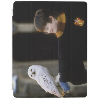 Harry and Hedwig 3 iPad Cover
