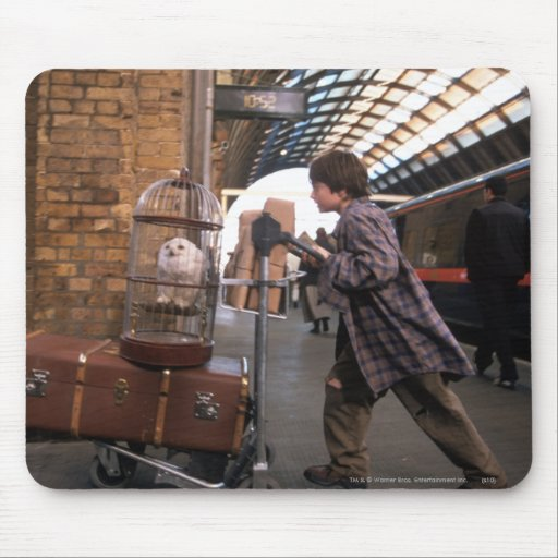 Harry and Hedwig Platform 9 3/4 Mousepads