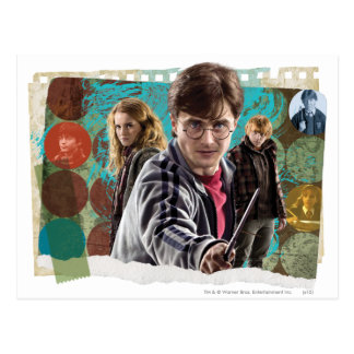 Harry, Hermione, and Ron 1 Postcard