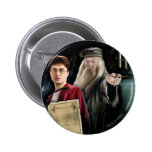 Harry Potter and Dumbledore Pin