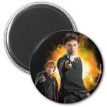 Harry Potter and Ron Weasely Magnet