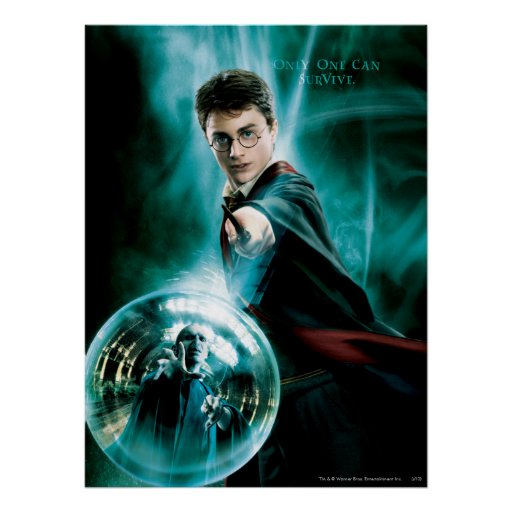 Harry Potter and Voldemort Only One Can Survive Print