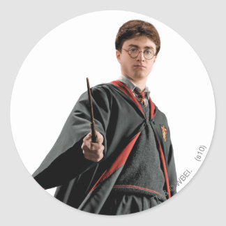 Harry Potter At The Ready Stickers