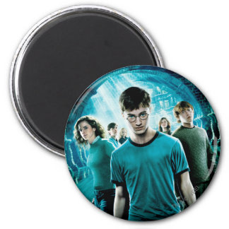 Harry Potter Dumbledore s Army 4 Magnet