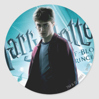 Harry Potter HPE6 2 Stickers