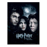 Harry Potter Movie Poster Postcards