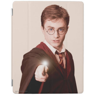 Harry Potter Points Wand iPad Cover