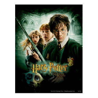 Harry Potter Ron Hermione Dobby Group Shot Postcard