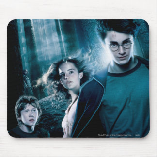 Harry Potter Ron Hermione In Forest Mouse Mat