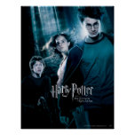 Harry Potter Ron Hermione In Forest Poster