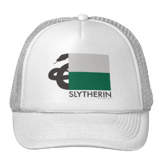Harry Potter | Slytherin House Pride Graphic Cap
