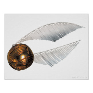 Harry Potter Spell | Golden Snitch Poster