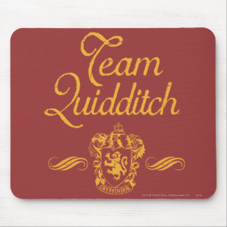 Harry Potter | Team QUIDDITCH™ Mouse Mat