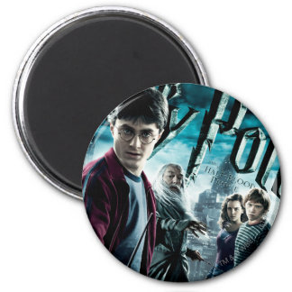 Harry Potter With Dumbledore Ron and Hermione 1 Magnet