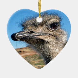 Harry the Happy Ostrich Ceramic Heart Decoration